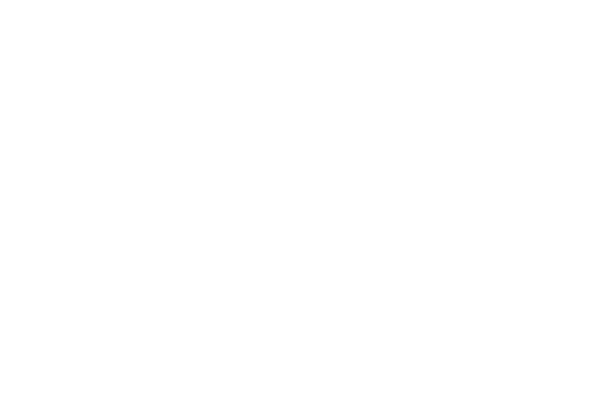 Trunk Studio logo